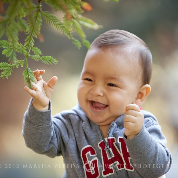 Squishy cheeks! {california baby photography}