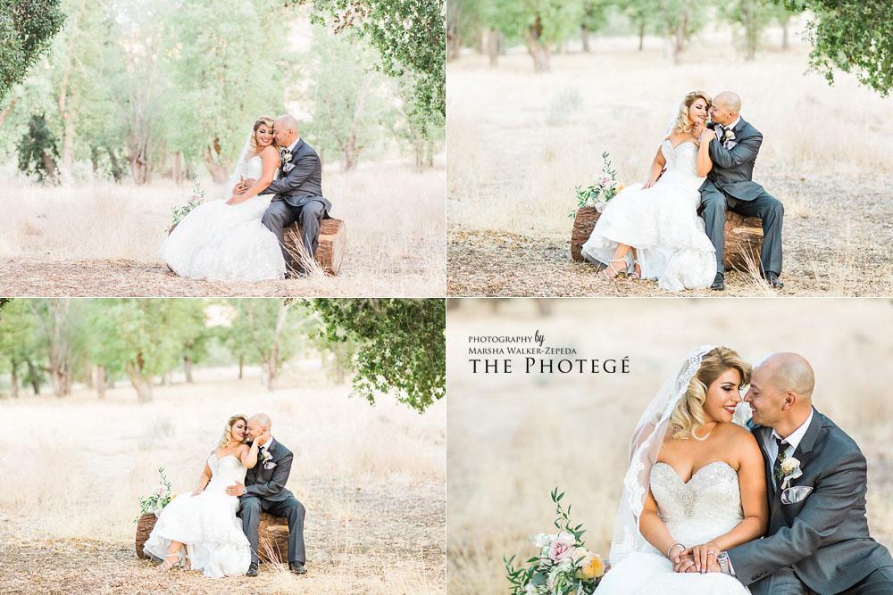 bakersfield wedding photographer