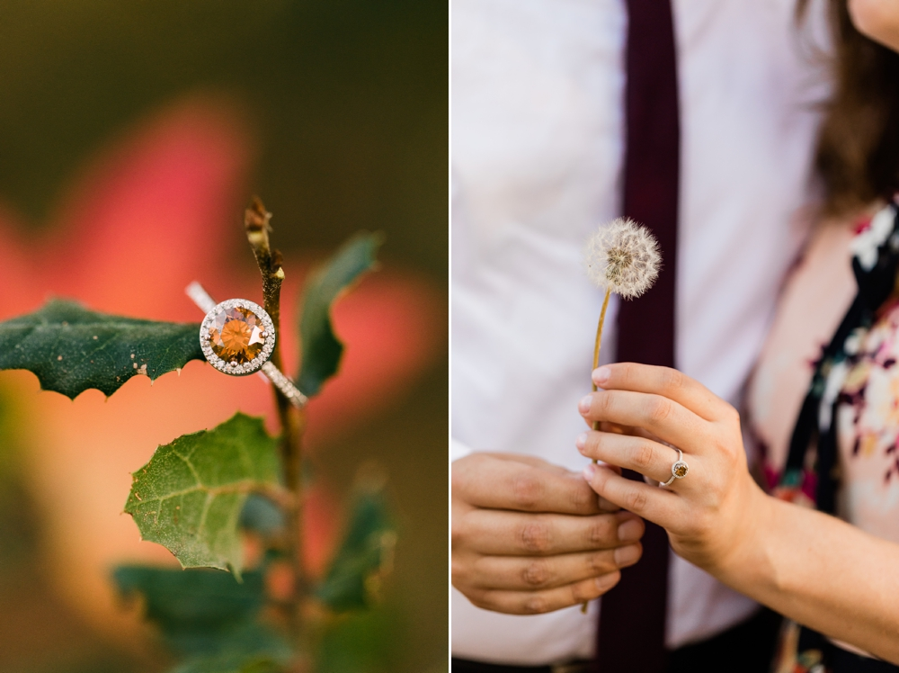 bakersfield engagement session, blowing wishes, chocolate diamond ring, fall colors