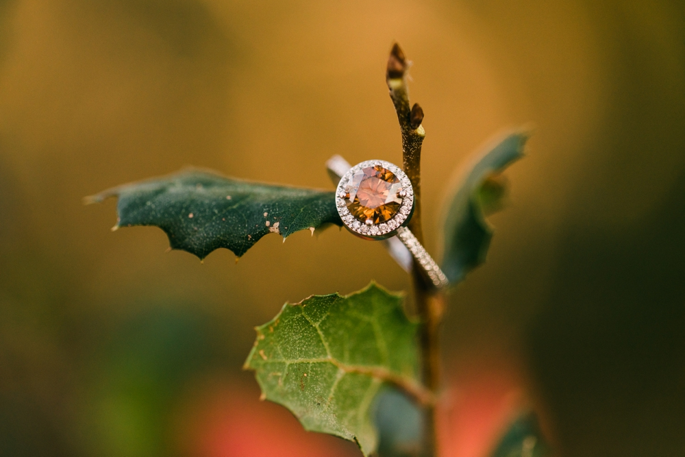 chocolate diamond ring, fall colors